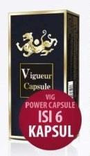 vigpower6BROSUR21